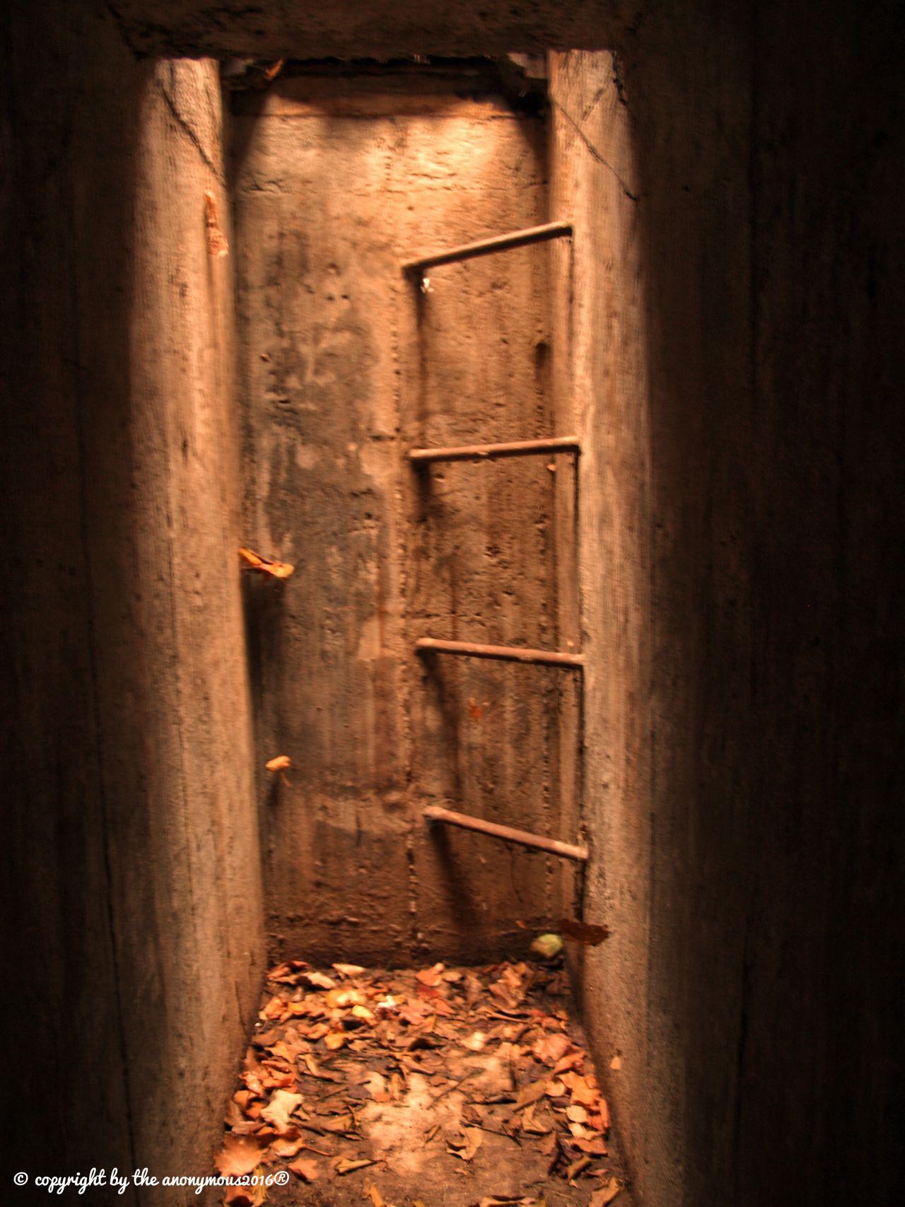 Nature Cellar Door Indoors  Abandoned No People Basement Architecture Day Outdoors EyeEmBestPics EyeEm Nature Lover EyeEm Gallery EyeEm Best Shots EyeEm Best Edits Eye4photography  Beauty In Nature Capture The Moment