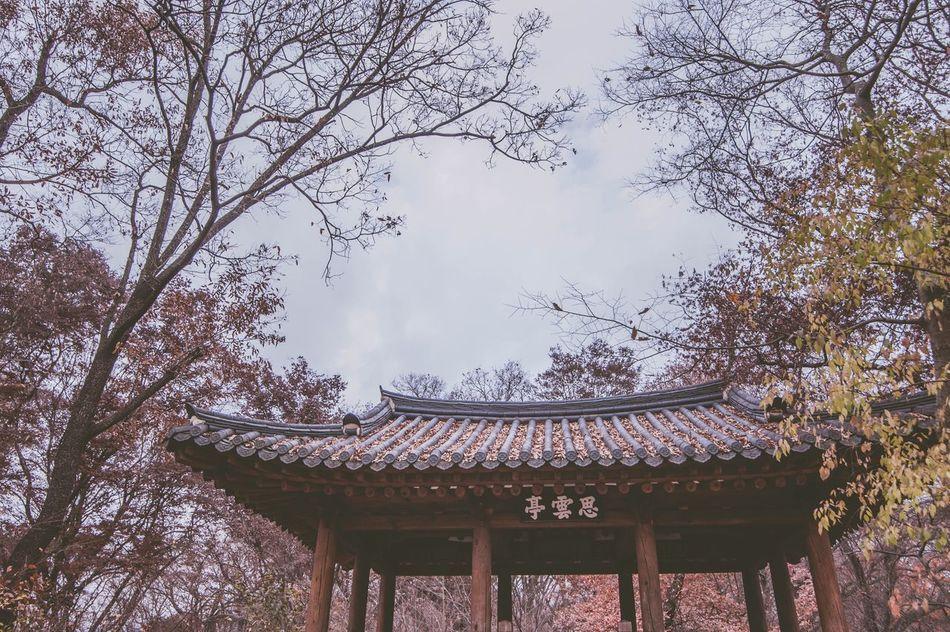South Korea Fall No People Castle Beautiful Building Hamyang Park Nature
