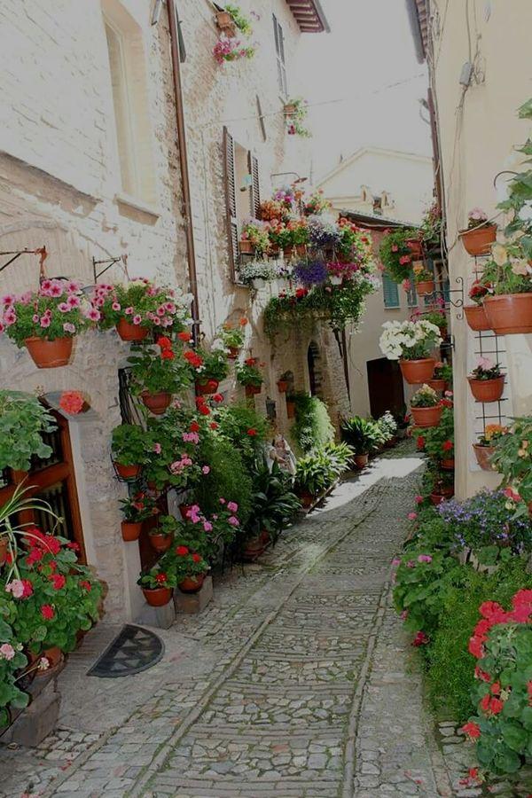 Assisi Italy Umbria