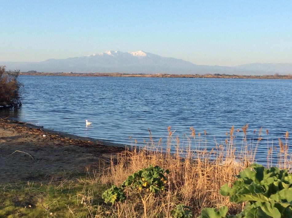 Lac de Canet Beauty In Nature