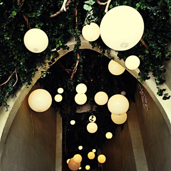 Light Up Your Life Efteling Lights