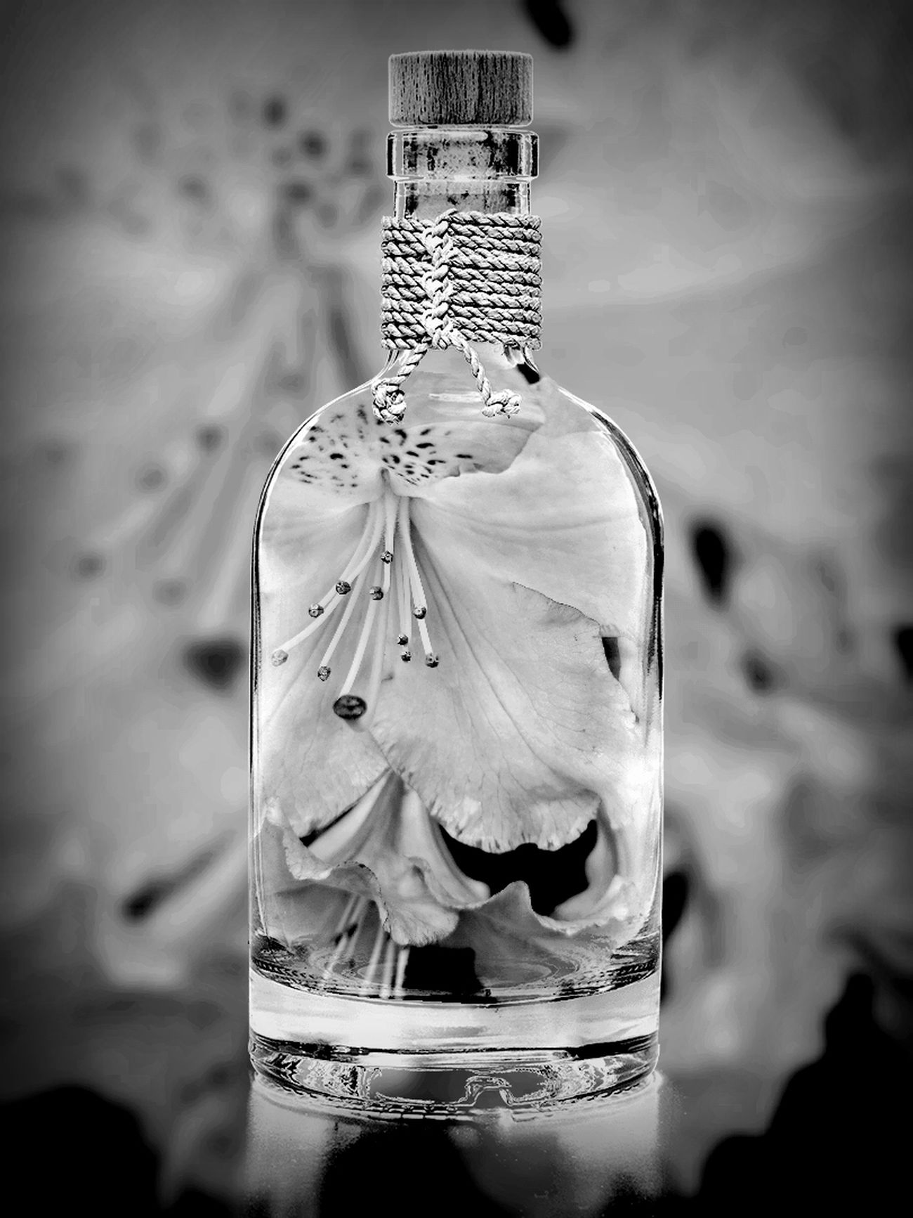 Colage Bottle No People Close-up Love Of Flowers Dhalia