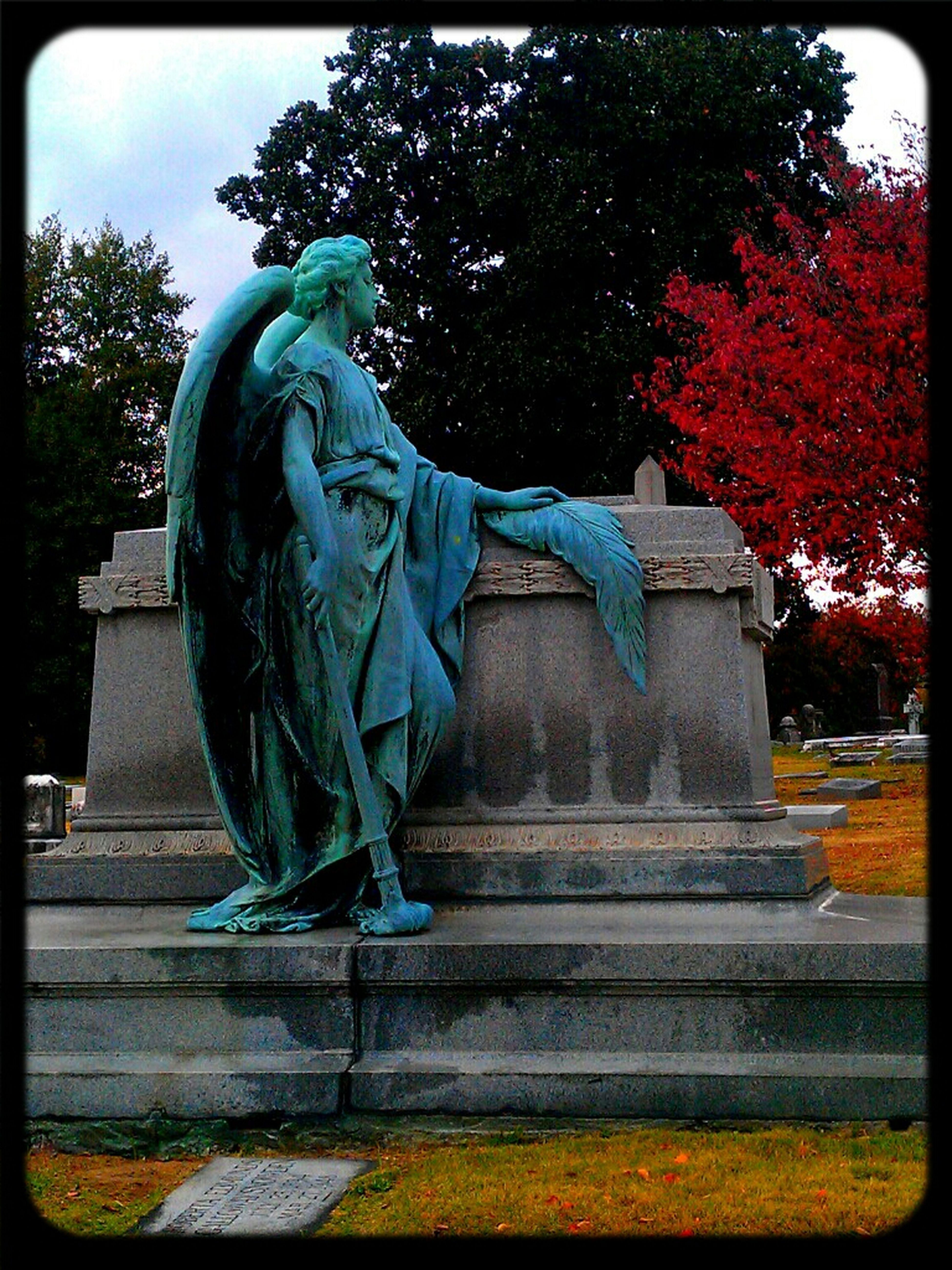 Cemetery Graveyard Beauty Elmwood