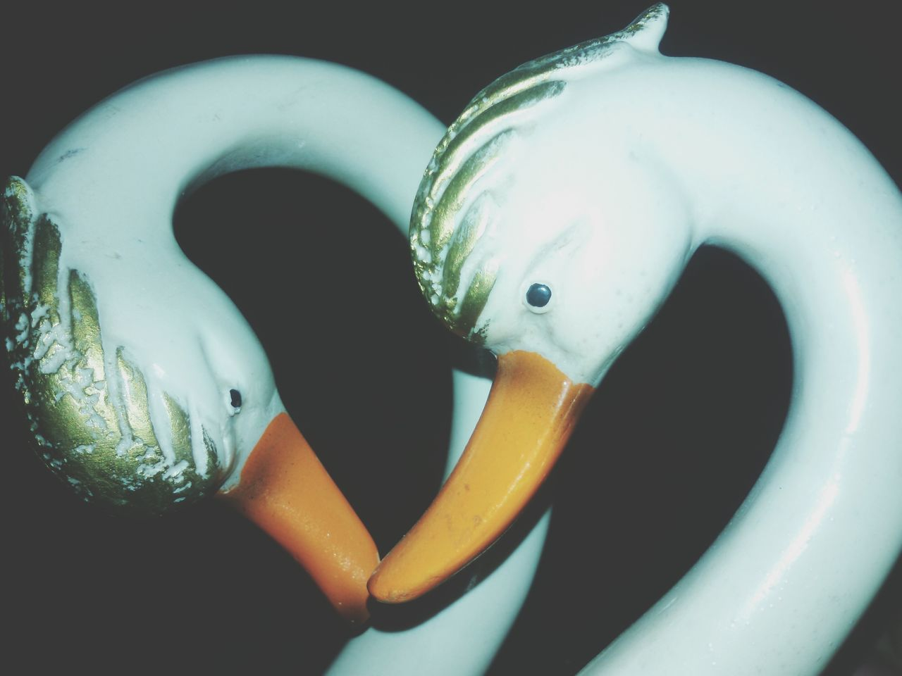 Break The Mold TCPM Art Is Everywhere EyeEmNewHere Swans Of Eyeem Swans Lover Photography We Can Learn Meaning Of True Love From Birds Also Cute Pic♡ Close-up Cut And Paste EyeEmNewHere Place Of Heart Live For The Story