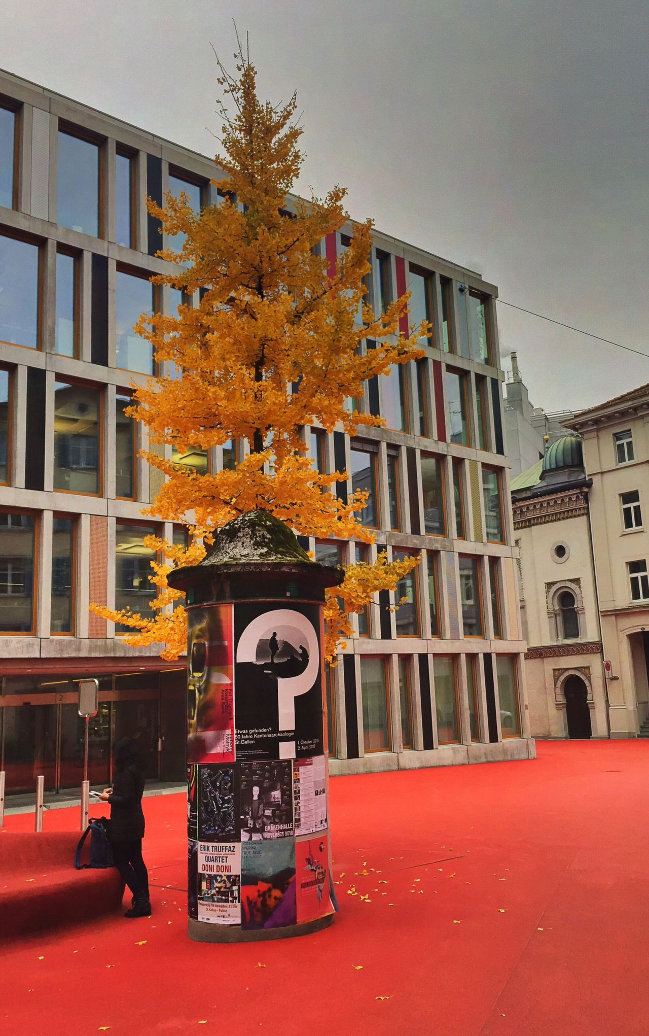 Roter Platz Autumn Red Square City Tree
