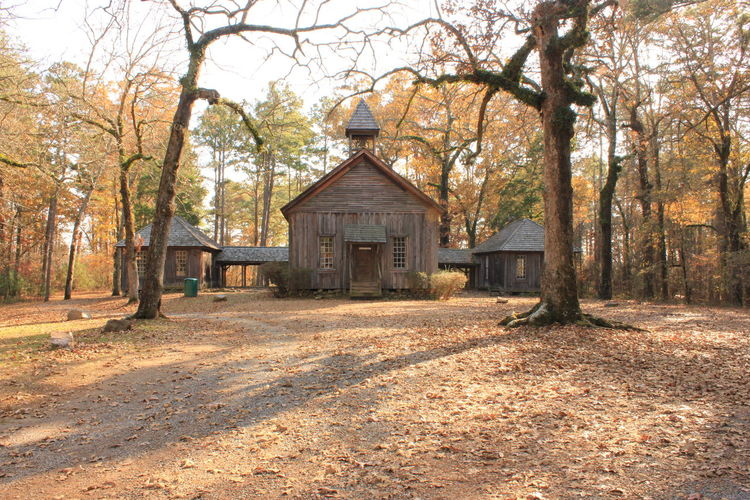 1900s Architecture Autumn Building Exterior Built Structure Creepy Day Defunct Fall Nature No People Rural Rustic SchoolHouse Sunlight Tree Vintage Wooden
