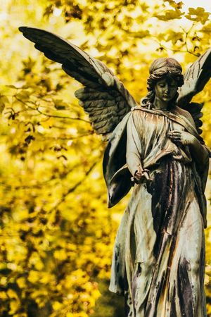 Autumn Cemetery Fall Fall Colors Cemetery Photography Cemetery_shots Angel