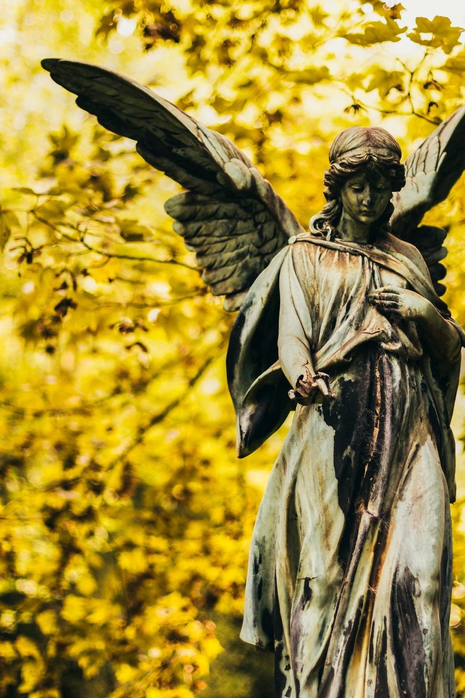 Beautiful stock photos of angel, Angel, Art And Craft, Autumn, Day