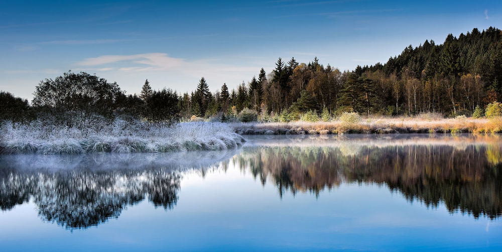 Beauty In Nature Blue Calm Clear Sky Day Deinbayern Deininger Weiher Idyllic Lake Nature No People Non-urban Scene Outdoors Reflection Scenics Sky Standing Water Tranquil Scene Tranquility Tree Water Waterfront Landscapes With WhiteWall