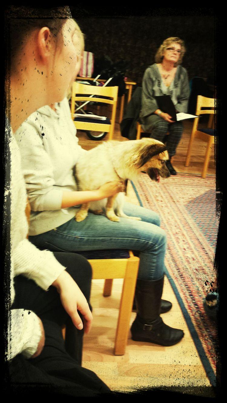 Körövning med hund och barn Choir Practice Dogs