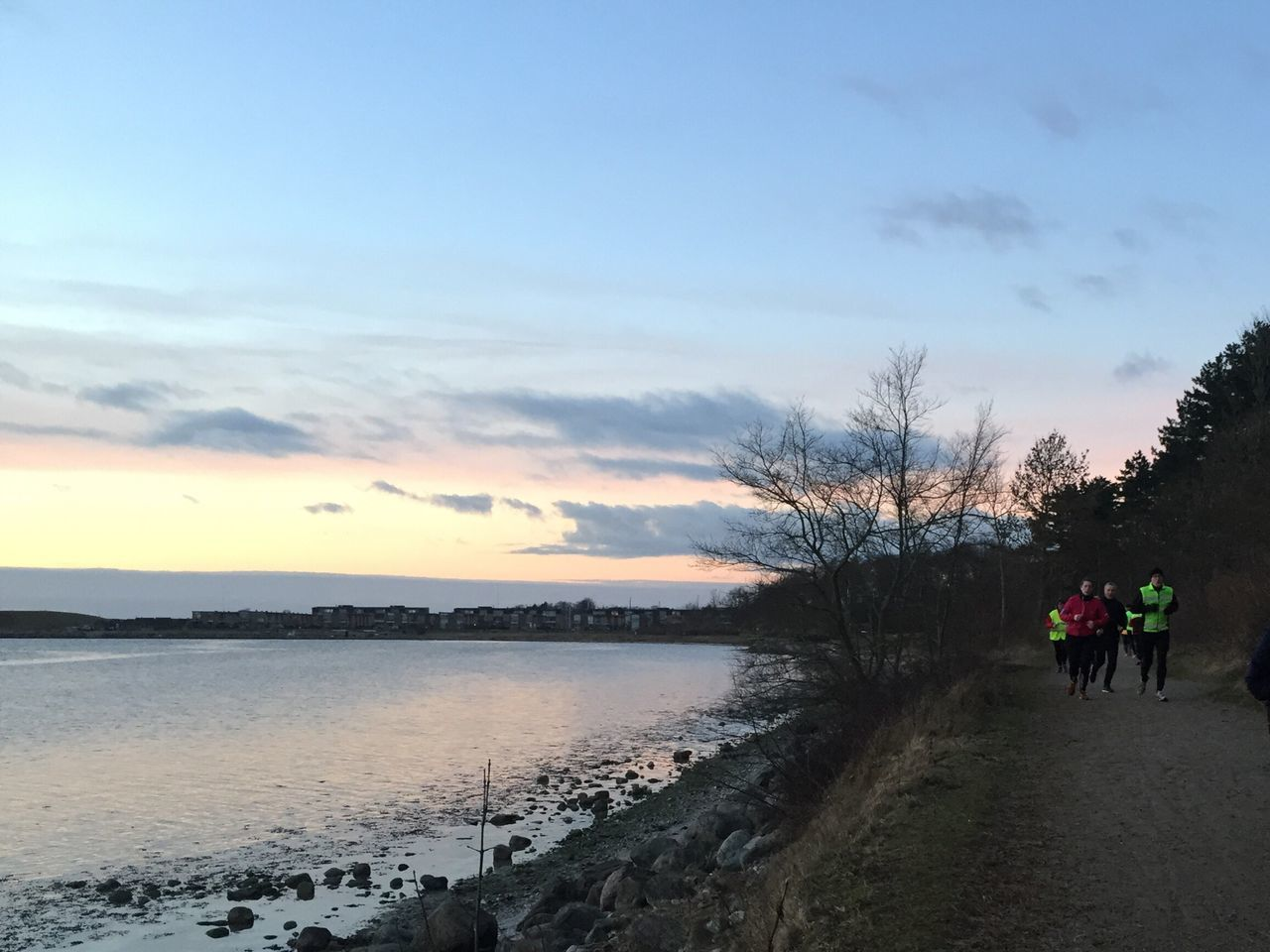 walking, sky, real people, nature, sunset, men, leisure activity, beauty in nature, cloud - sky, scenics, lifestyles, silhouette, two people, outdoors, togetherness, tree, women, bare tree, water, mammal, day, adult, people