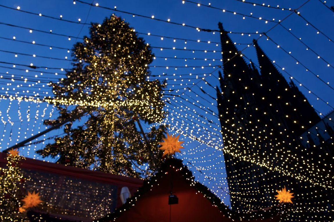 Cologne Cathedral Christmas Market Christmas Christmas Around The World Christmas Eve Christmas Lights Christmas Market Christmas Market ♡ Christmas Time Cologne Christmas Market Cologne, Germany Event Kölner Dom Christmas Decoration Christmas Decorations Christmas Markets Christmas Tree Christmastime Cologne Cathedral Colognecathedral Illuminated Low Angle View Night No People Outdoors Sky Weihnachtsmarkt