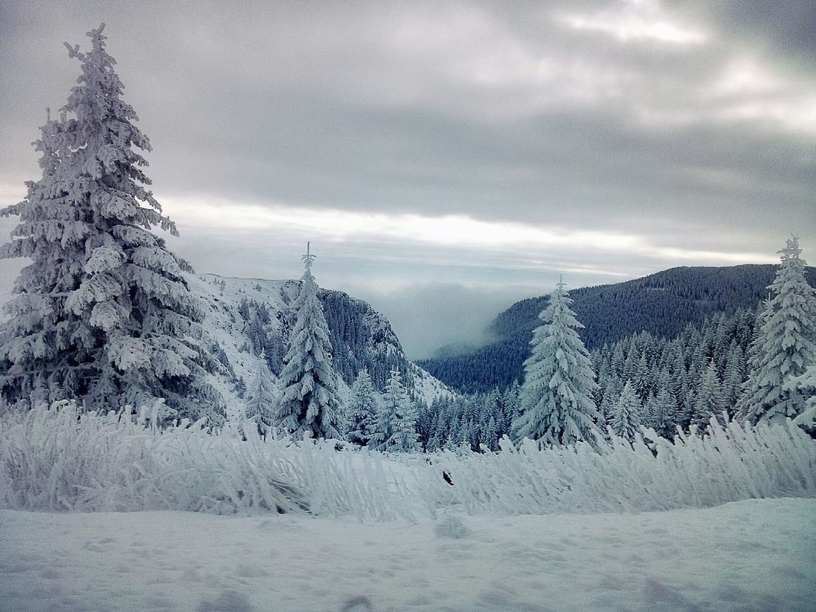 Edge Of The World Winter Traveling Frozen Nature From My Point Of View Snow Mountains And Sky Mountains at Kopaonik, Serbia My Winter Favorites It's Cold Outside Landscapes With WhiteWall