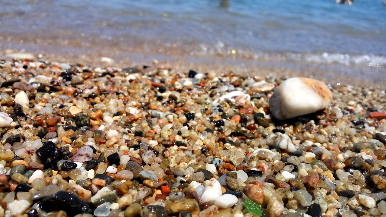 beach, shore, pebble, sea, nature, sand, no people, seashell, water, day, beauty in nature, outdoors, close-up, pebble beach