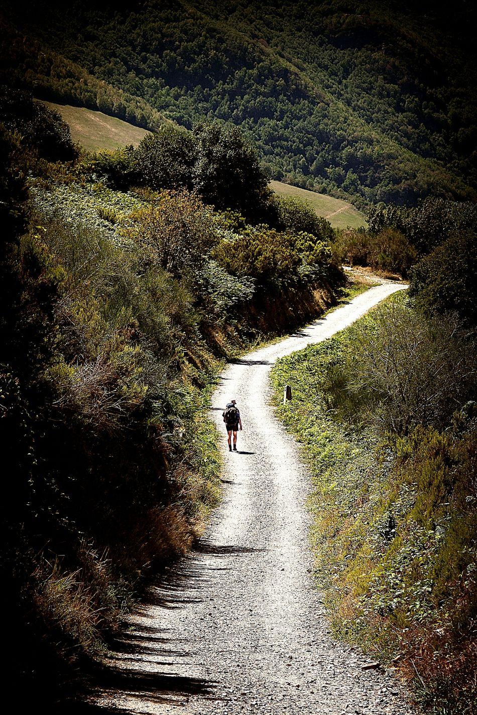 SPAIN El Camino De Santiago CaminodeSantiago Santiagodecompostela Traveling Travel BuenCamino Galicia Galicia, Spain Galizia