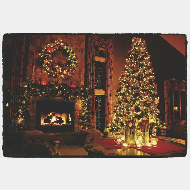 •Christmas isn't a season, it's a feeling.• 劉爱菲 Christmas Time Happy Capture