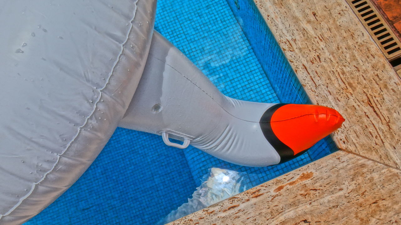 High Angle View Of Inflatable Ring At Swimming Pool