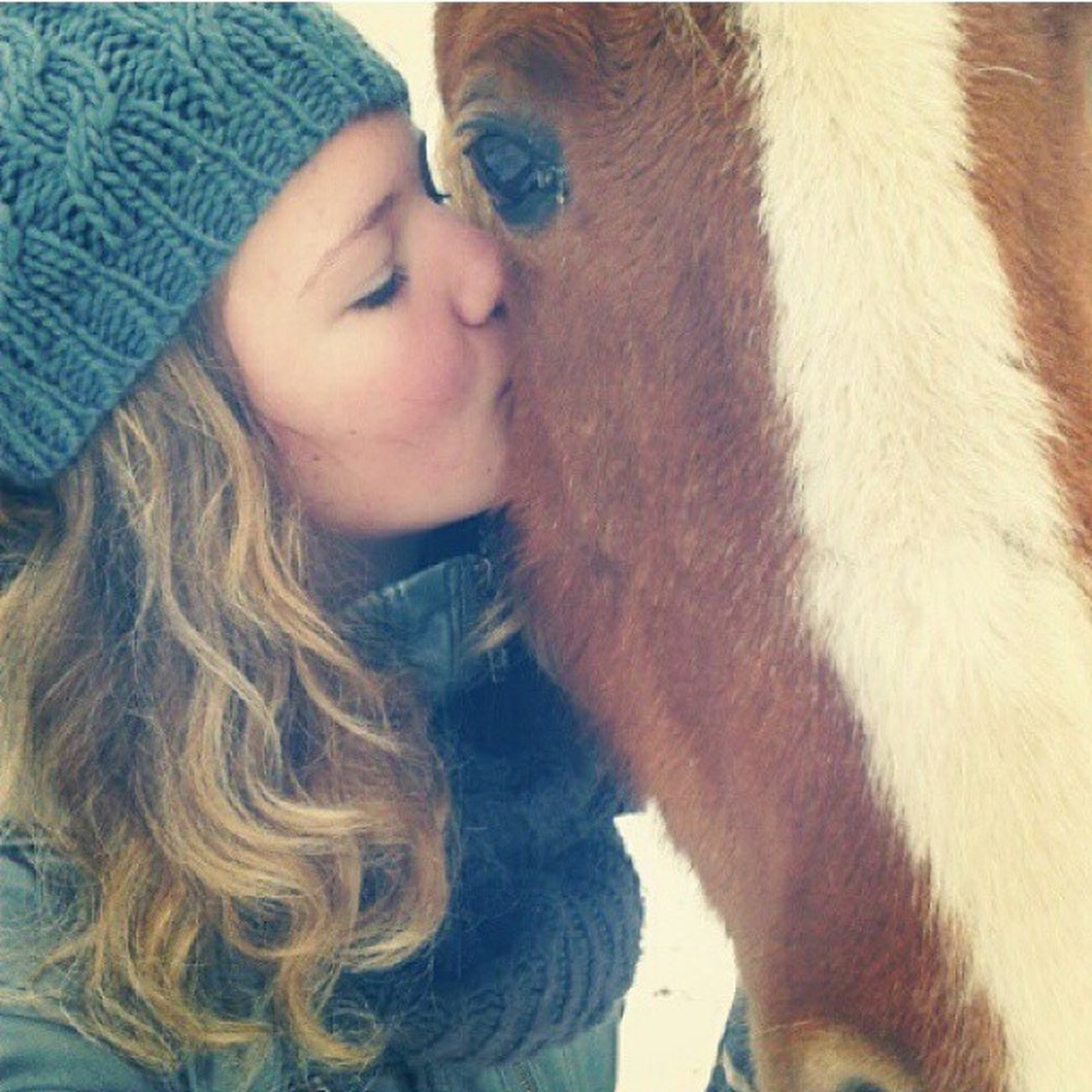 Throwback . This horse has my heart. Weird to say, but she's one of my best friends. Weird how much you can count on an animal. I don't regret a thing. She's the cutest, loveliest, best horse ever. She wouldn't hurt anything or anyone. She wants to work for you, sometimes she's trying to play you but in the end, she will do what you ask her. She always comes to you if you call her and loves attention.. And food. Ksorry for this dramatic spam lol. I just miss herrr