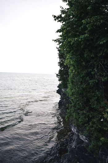 A jagged shoreline. Sea Nature Tree Scenics Tranquility Beauty In Nature Water Tranquil Scene No People Clear Sky Outdoors Sky Day Landscape