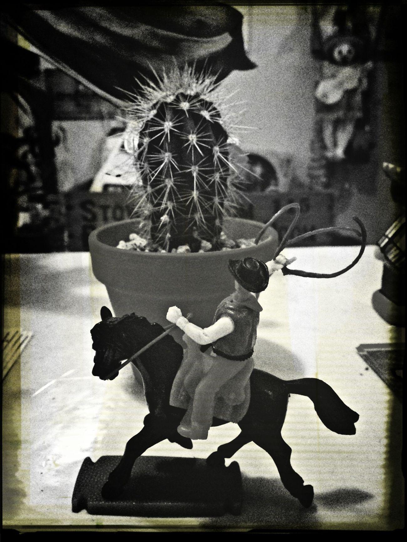 メキシコBAR