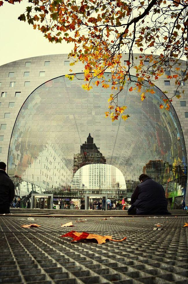 Autumn Colors Markthalrotterdam Architecture Reflection