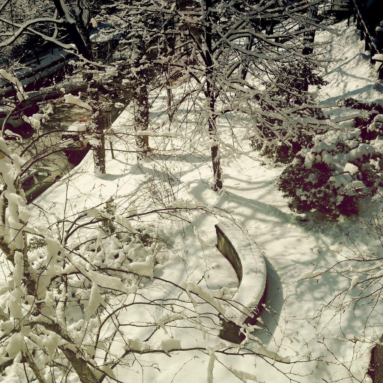 View from the window of my classroom... Winter wonderland!!! Cheers!!! EyeEm Best Shots Winter Hello World Winter Wonderland