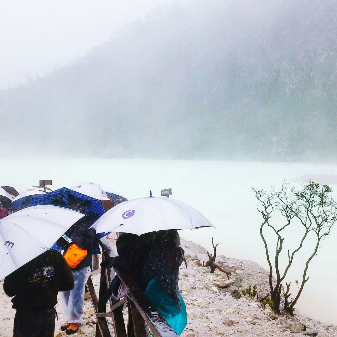 Beautiful stock photos of umbrella, Beauty In Nature, Cold Temperature, Day, Lifestyles