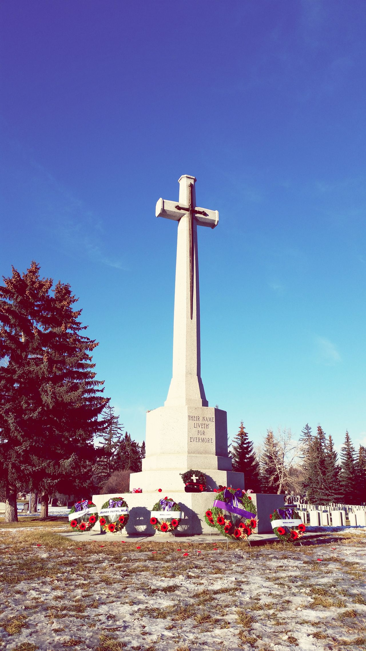 Beautiful stock photos of veteran's day, Cemetery, Christianity, Cross, Day