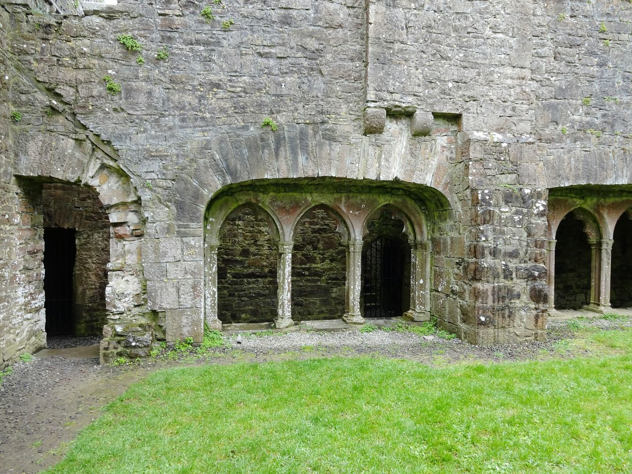 Architecture Arch Built Structure Green Color Day Building Exterior No People Grass Outdoors Nature Ireland Irland Ruine Ruin Ruined Building Kloster Monastery Cloudy Day Tranquil Scene History Bogengang Old Building  Stone Wall