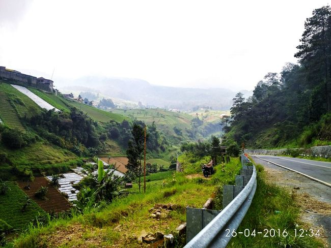 Long Roads Mountains Green Green Green!  Cold Motorbike Indonesia_photography Wow That's So Cool !! Hello World
