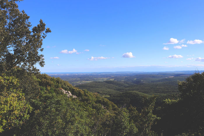 Canon Canonphotography France Montpellier Photoftheday Photography Pic Saint Loup Tranquility Travel Travel Destinations