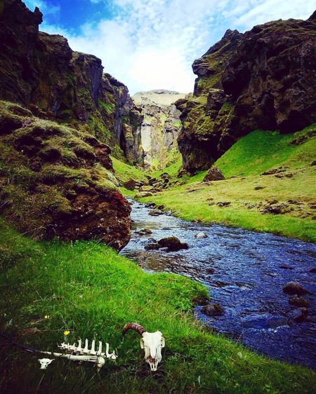 Nature Iceland Beauty In Nature Tranquility Outdoors Landscape Mountain Water Travel Destinations Home Canyon Sheep Circle Of Life And Death CIRCLE Of LIFE Beutiful  Iceland Trip Iceland_collection