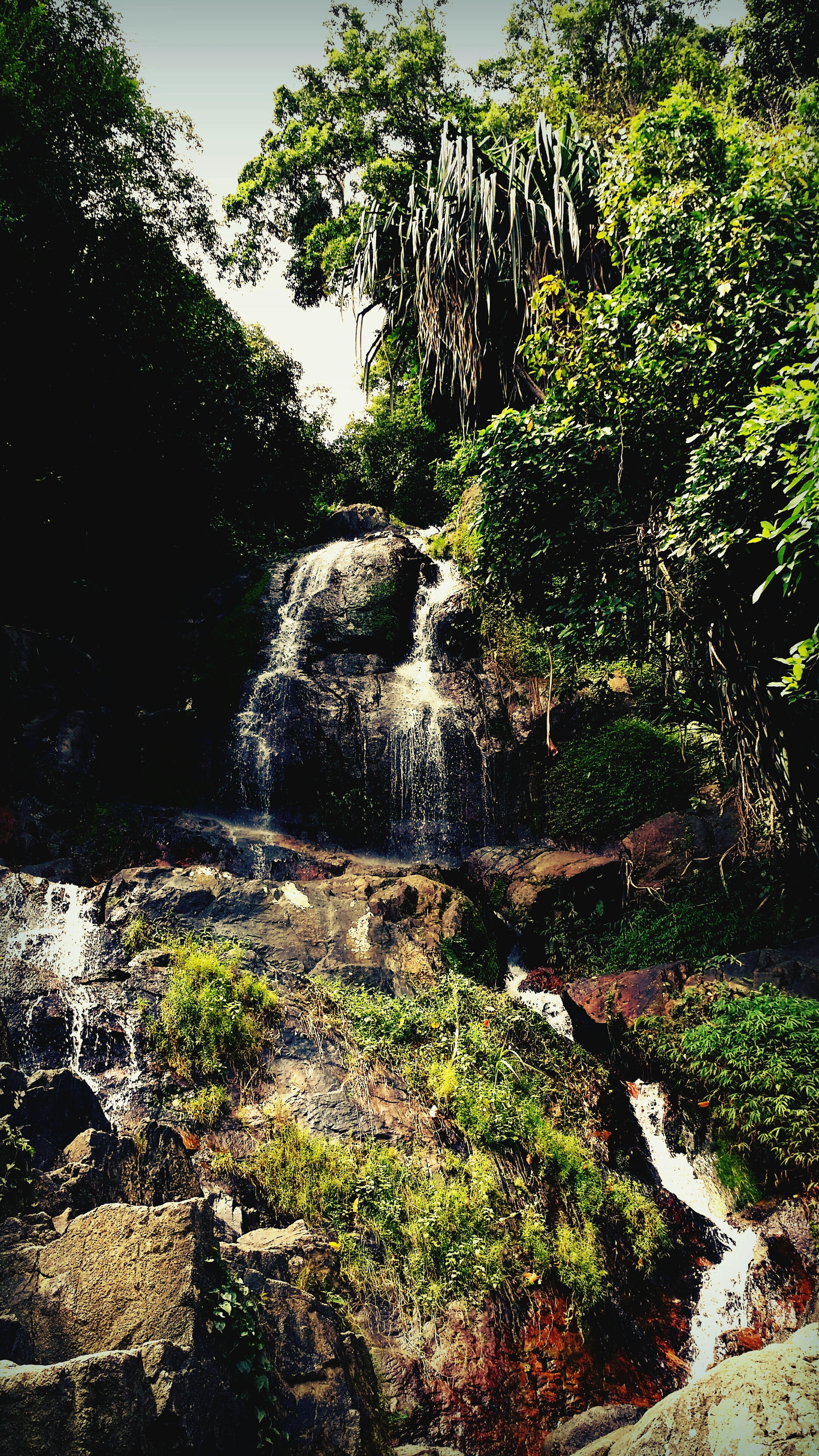 Waterfall Enjoying Nature Nature_collection Beautiful Koh Samui Thailand Rainforest Tracking Travelling