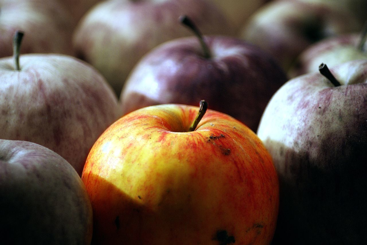 fruit, food and drink, healthy eating, food, close-up, no people, freshness, focus on foreground, day, indoors