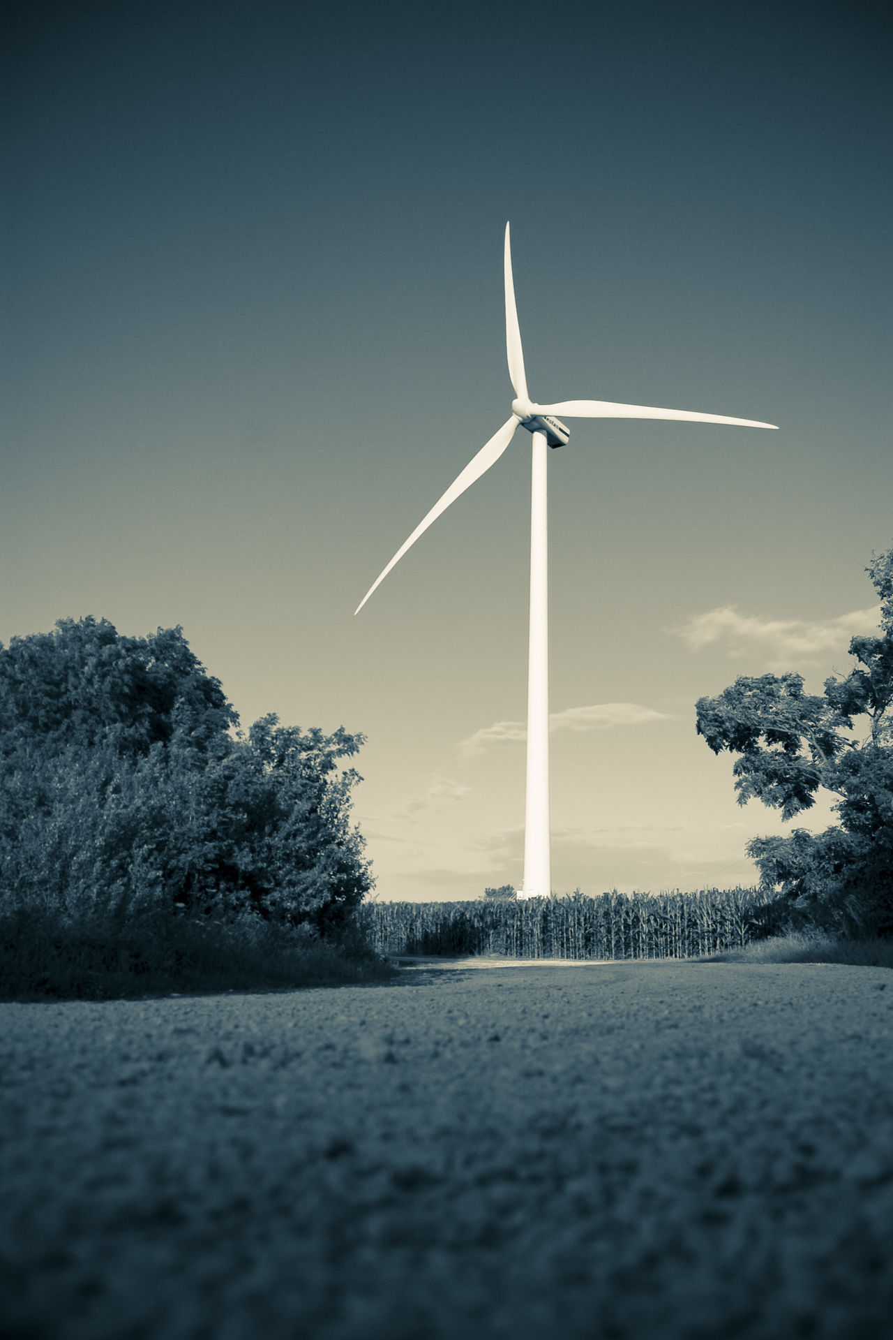 Alternative Energy End Of The Road Environmental Conservation Field With Wind Power Station Green Power Landscape Landscape With Power Station Monochrome Photography Outdoors Power Plant Power Station By Road Technology And Nature Tone Splitting Wind Power Wind Power Generator
