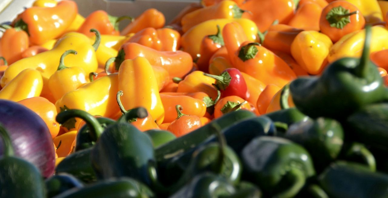 Red Peppers Peppers Red Pepper Yellow Peppers Orange Peppers Farmers Market Farmersmarket Vegetables Marketplace Market Stuart, Fl Farmer's Market Healthy Eating Healthy Food Healthy Lifestyle Eat A Rainbow Treasure Coast Fort Pierce Florida Stuartflorida Vegetable Vegetables & Fruits Vegetarian