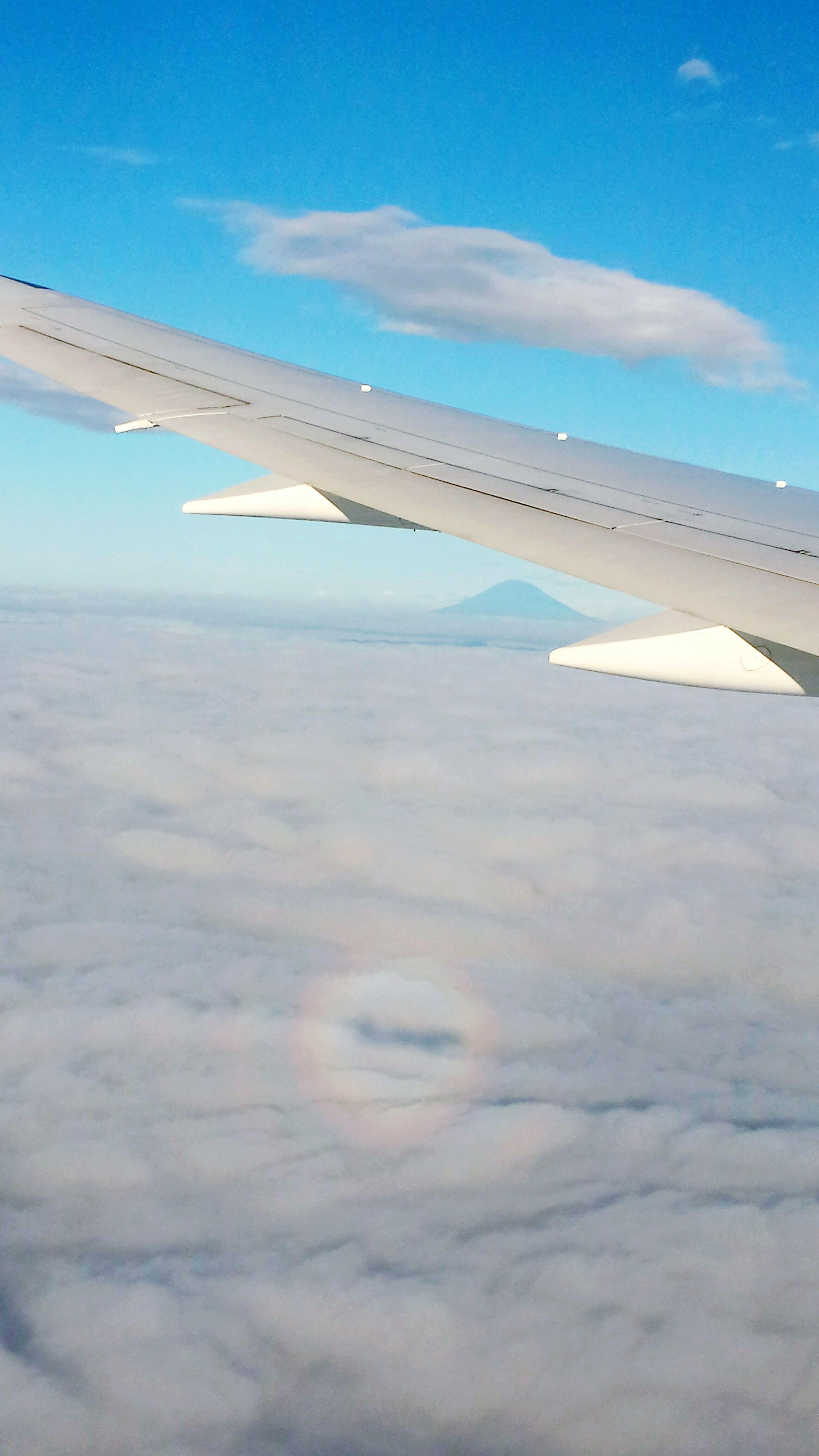 ブロッケン現象  Brocken Spectre Aircraft Wing Airplane Flying Glory Rainbow Cloud - Sky Mt.Fuji