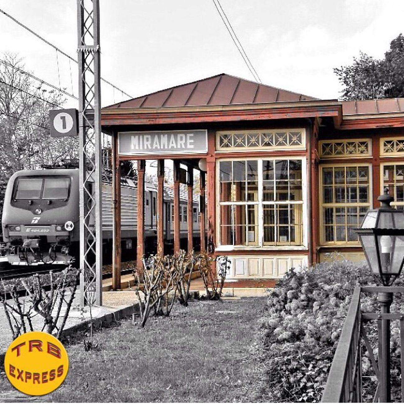 Trains_worldwide Rail_barons Trailblazers_rurex Trb_collabs Trailblazers_urbex Trb_autozone Bipolaroid_asylum Train_nerds Trainphotography Splendid_transport Trb_country Jj_transportation Ig_photolove Trb_random Trb_bnw Trb_rural Ig_shutterbugs Loves_transports Trb_express Railmarkable Railways_of_our_world Railfans_of_instagram Ig_trainspotting Train_of_our_world Trainportal Eisenbahnfotografie