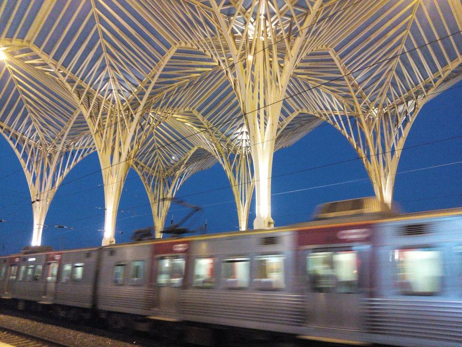 Gare Do Oriente Garedooriente Gare Trainstation Traintracks Train Tracks Train Station Train Railwaystation Rail