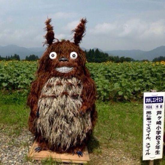 Deceptively Simple 新潟県 津南町 向日葵畑 案山子コンテストでもこれが良い💓となりのトトロ♪ Anime Scarecrow Scarecrow_contest Sunflowers🌻 Totoro My_neighbor_totoro Amazing View Nature Photography Studio_Ghibli
