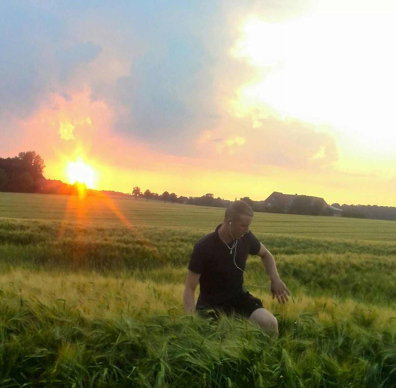 grass, field, sunset, nature, sky, landscape, growth, sun, outdoors, sunlight, one person, beauty in nature, tree, day, people