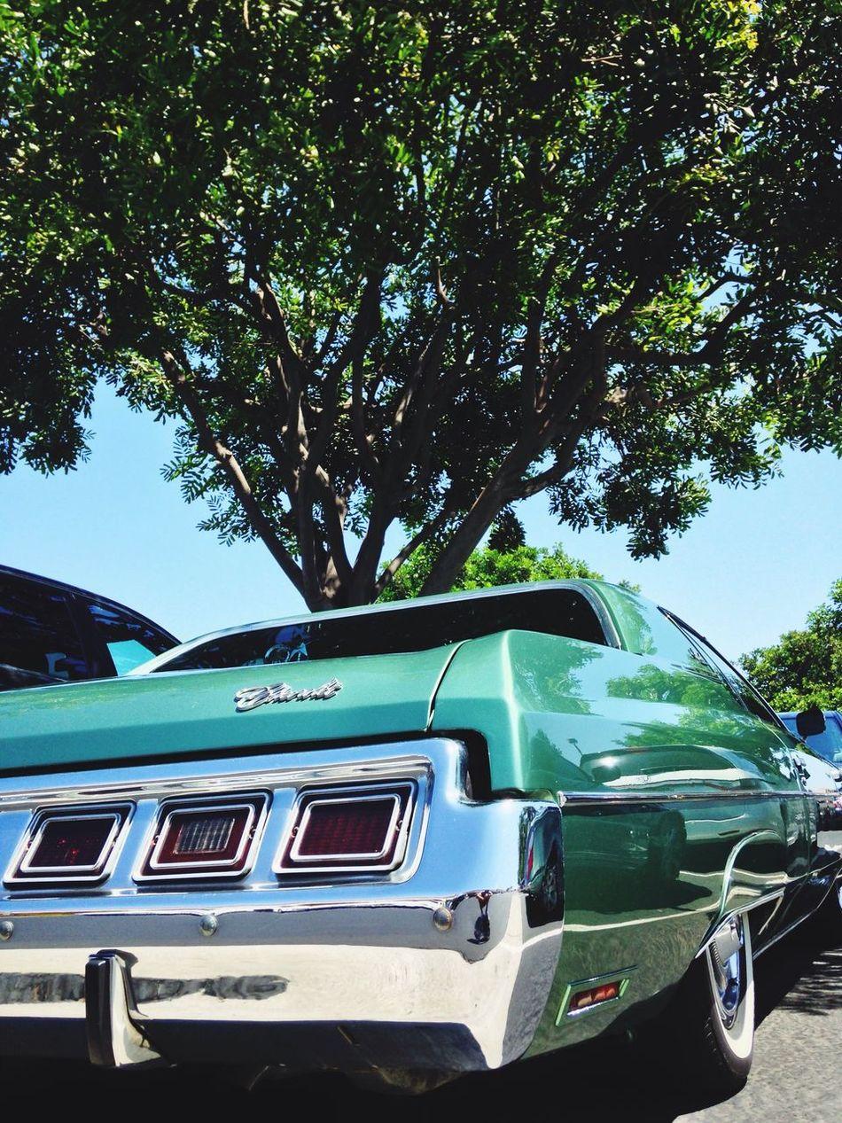 Car Green Taking Photos Vintage Cars Green on Green! So Beautiful!