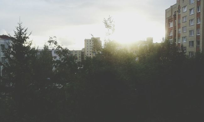Hi! Trees Blobs Rain Sun Evening House Nice Weather FolowMe ✌ Folowforfollow Panevėžys Lietuva :*