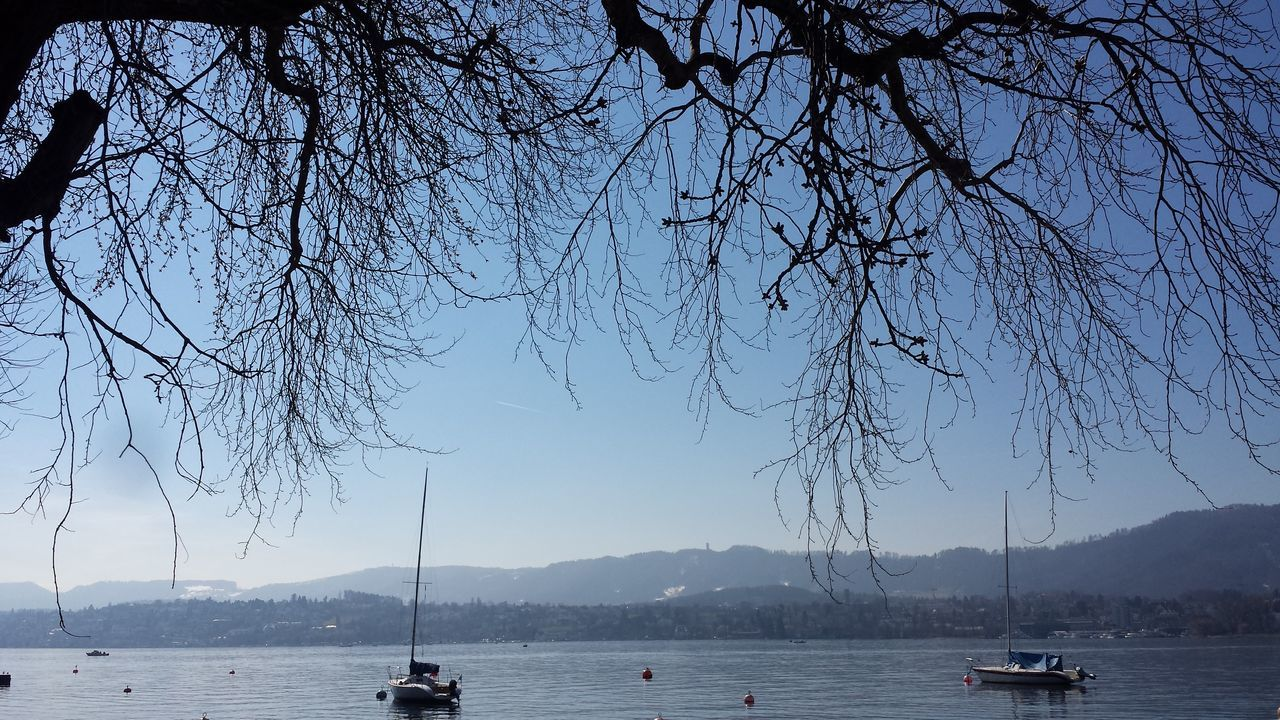 water, nautical vessel, bare tree, tree, nature, sky, transportation, mode of transport, scenics, beauty in nature, river, branch, waterfront, outdoors, no people, mountain, sailing, day