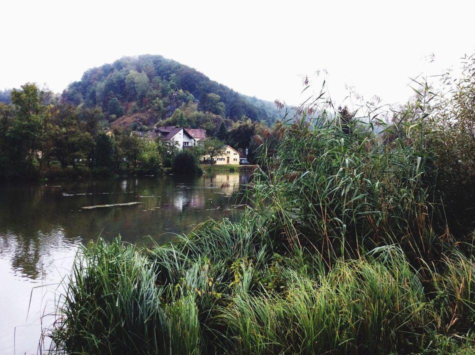 Water Nature Green Riverbank Pflanzenwelt Altmühl Fluss Outdoors Day No People Nature Idyllic Landschaftsbilder