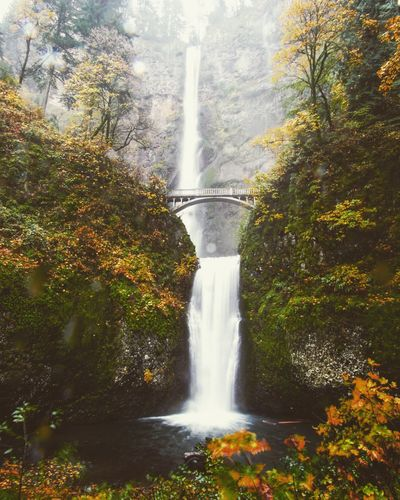Multnomah Falls is surreal on a rainy fall day. Alternative Energy Beauty In Nature Day Fountain Freshness Growth Long Exposure Motion Multnomah Nature No People Oregon Outdoors PNW Power In Nature Renewable Energy Reservoir Running Water Scenics Splashing Spraying Tree Water Waterfall Neighborhood Map