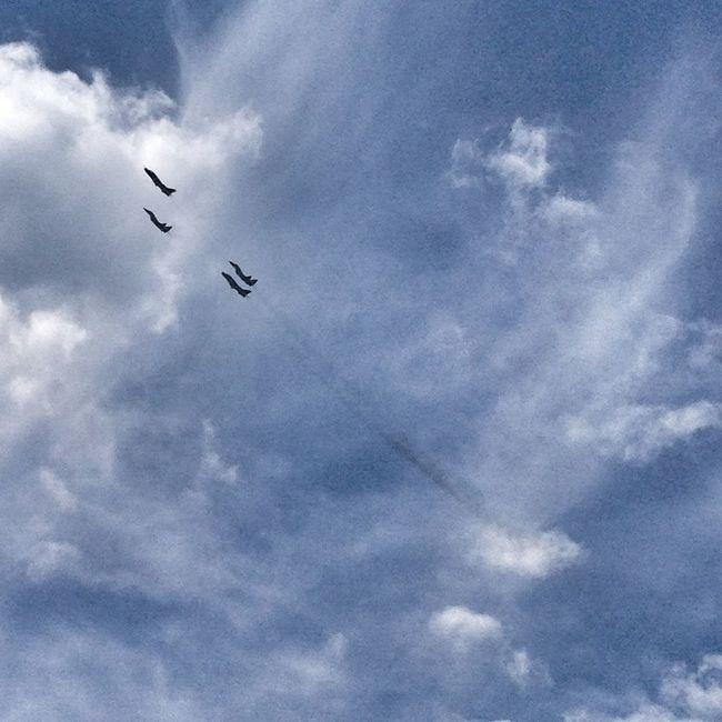 Sky MiG29 SU22 Parade