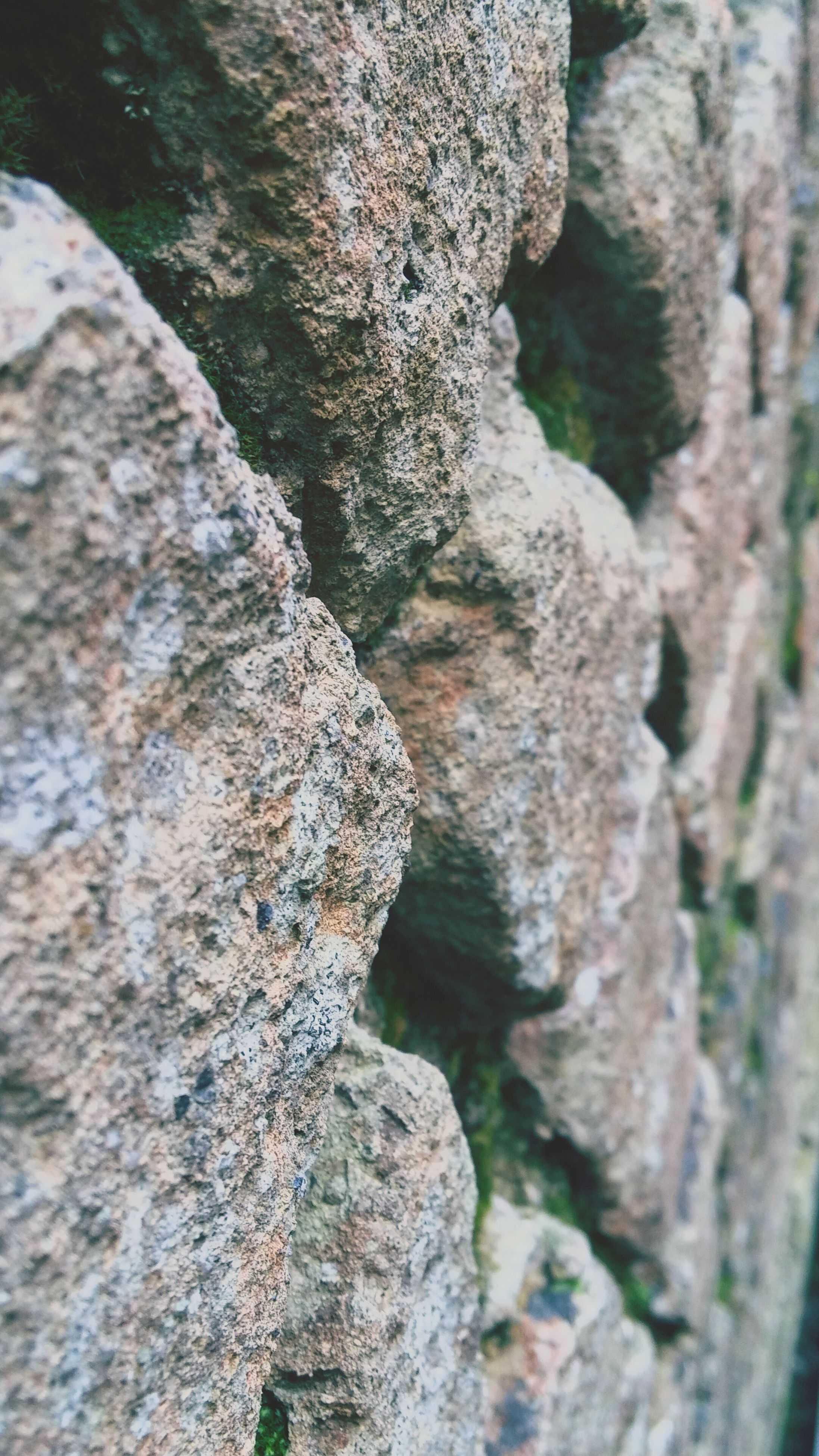 textured, rough, tree trunk, close-up, moss, bark, tree, rock - object, nature, rock formation, natural pattern, full frame, backgrounds, growth, rock, outdoors, pattern, weathered, day, no people