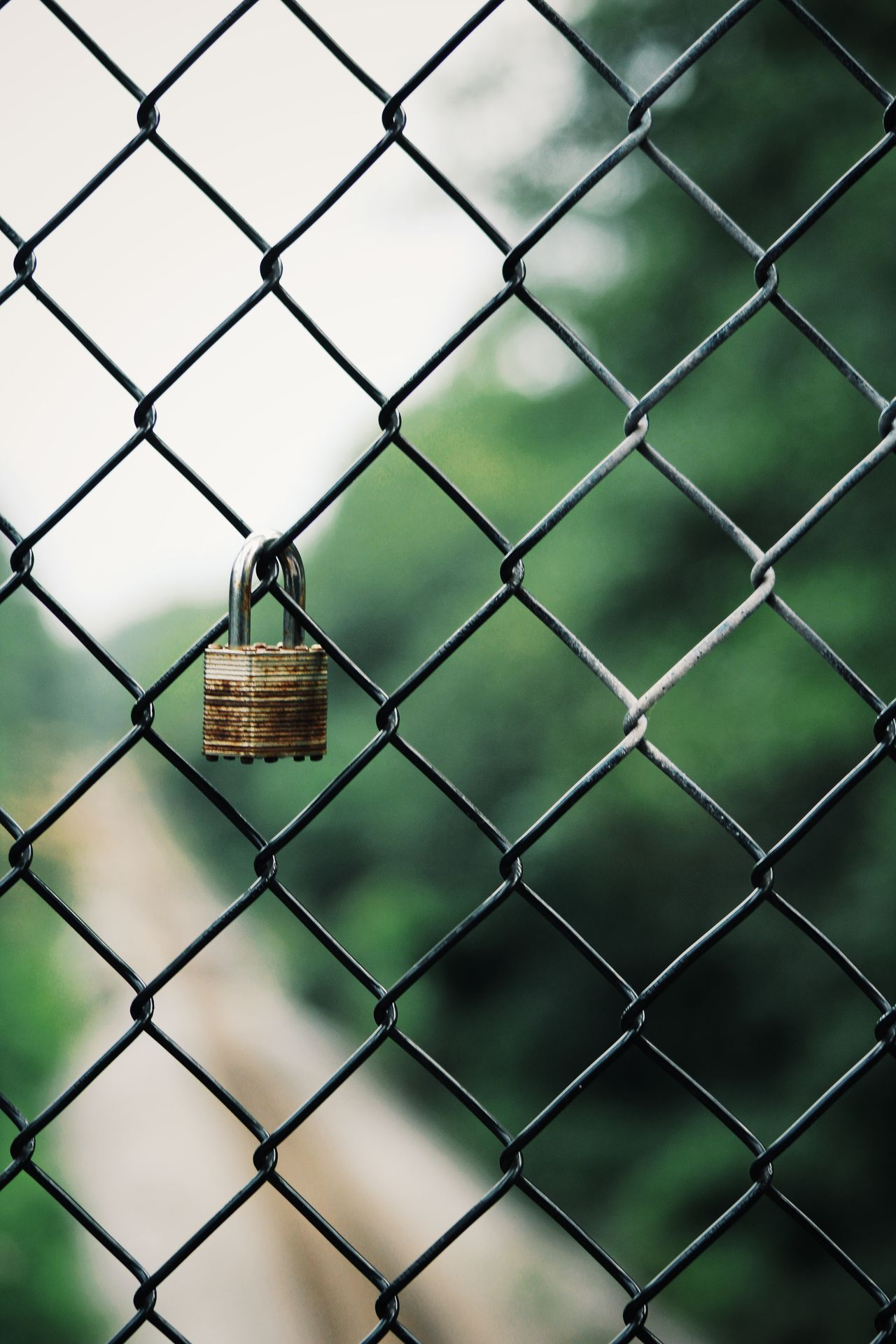 Beautiful stock photos of sicherheit, Backgrounds, Chainlink Fence, Close-Up, Day