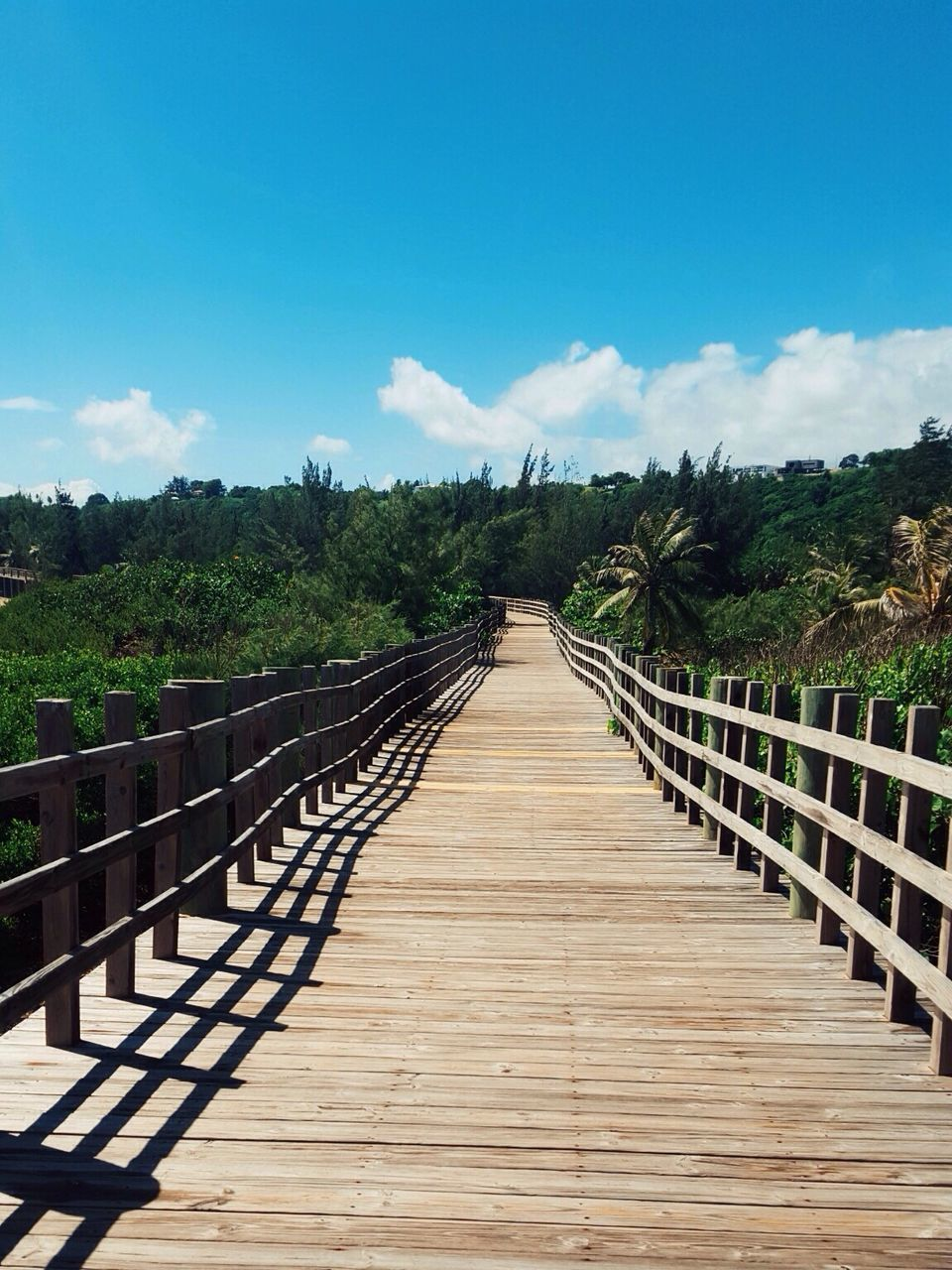 the way forward, railing, day, sky, outdoors, footbridge, wood - material, tranquility, wood paneling, tranquil scene, nature, cloud - sky, leading, no people, beauty in nature, scenics, tree
